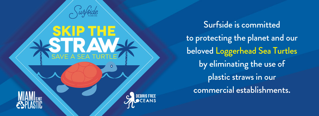 Skip the Straw - Save a Sea Turtle